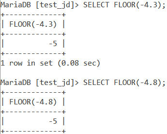 Floor Negative Numbers Example
